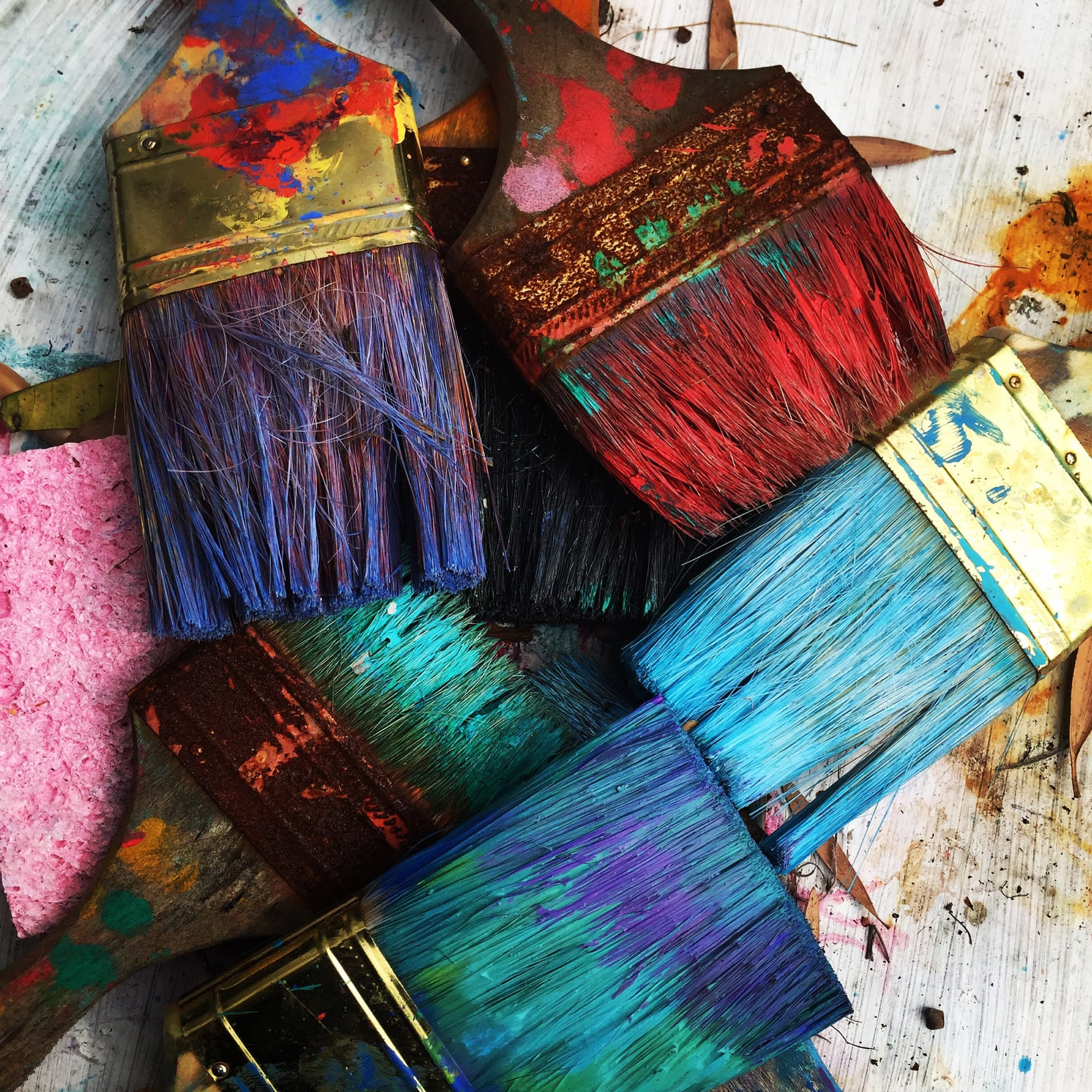 tuacahn-school-for-the-arts-brushes